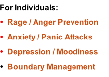 For Individuals: Rage / Anger Prevention Anxiety / Panic Attacks Depression / Moodiness Boundary Management